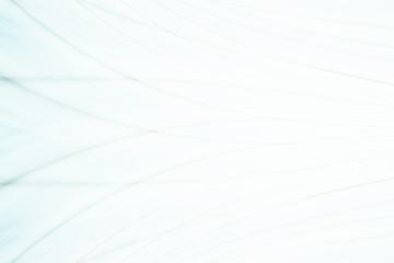 light gray background blur geometry line
