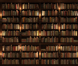 Bookshelf. Seamless texture (vertically and horizontally)