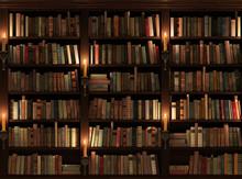 Regał na książki. Bez szwu tekstury (pionowo i poziomo)