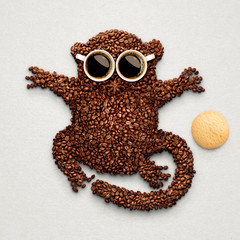 Tarsier with cookie.