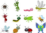 insect cartoon colle...