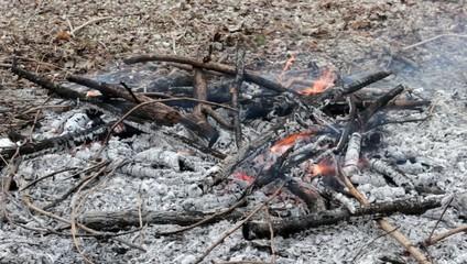 Cenere e fuoco