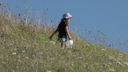 Little girl hiking in the nature on summer day