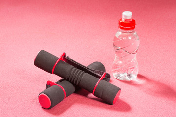 Fitness dumbbells on the sports rug