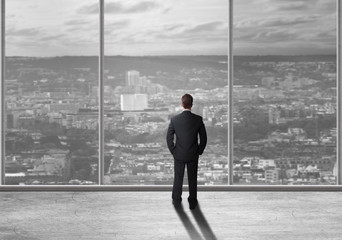 Rear view of a businessman overlooking a city skyline