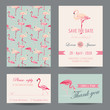 Invitation-Congratulation Card Set - Flamingo Theme - in vector - 79045469