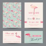 Invitation-Congratulation Card Set - Flamingo Theme - in vector