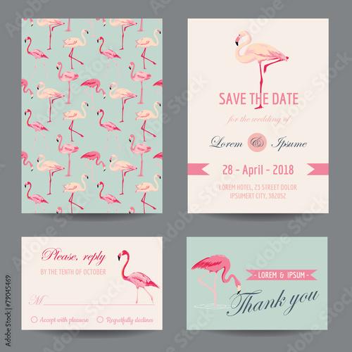 Invitation-Congratulation Card Set - Flamingo Theme - in vector - 79045469