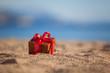 Terracotta color gift box ona beach - 79047075