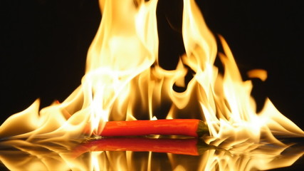 The chilli pepper in the fire