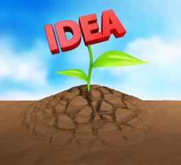 Idee Samen wachsen