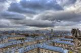 Notre Dame de Paris with Chimeras in Paris - 79053415