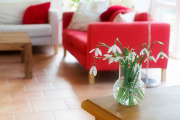 vase with snowdrops on a table in the living room
