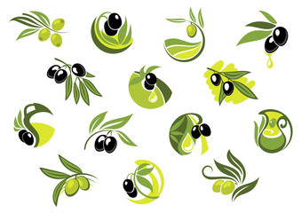 Olive tree branches with glossy olives