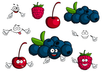 Cartoon cherry, raspberry, blueberries characters
