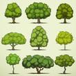 Set of cartoon deciduous trees