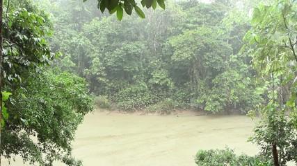 Tropical rainstorm over a rainforest creek, Ecuador