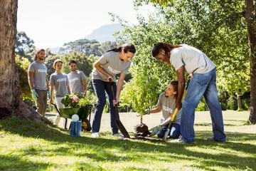 Team of volunteers gardening together