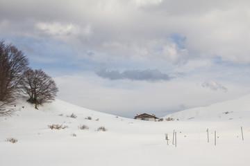 Vacanze invernali nello chalet di montagna