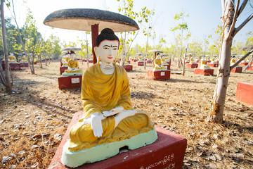Sitting Buddha statues beneath a Bodhi tree in Monywa, Myanmar.