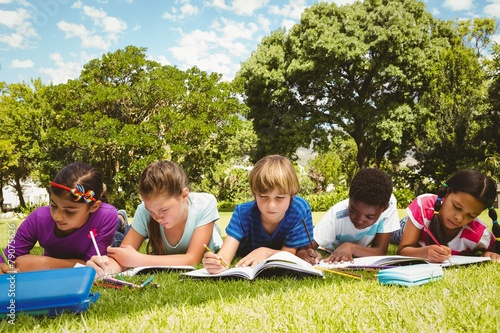 Children doing homework at park - 79075626