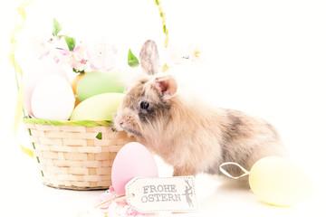 Osterkarte mit Kaninchen und Osterkorb