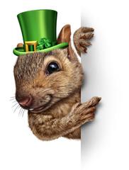 Spring Squirrel Banner