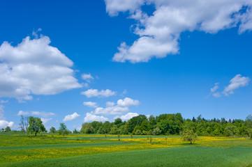 Landschaftspanorama Moosbronn