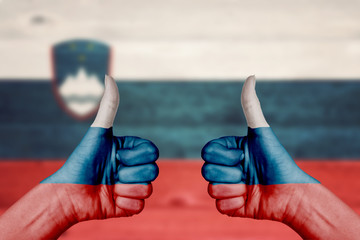 Slovenia flag painted on female hands thumbs up