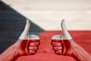 Czech Republic flag painted on female hands thumbs up