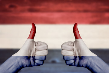 Netherlands flag painted on female hands thumbs up
