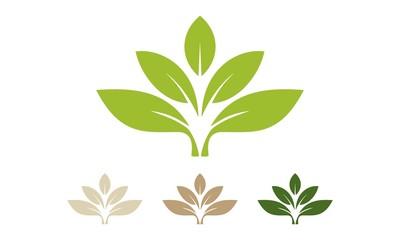 Leaf Logo 40