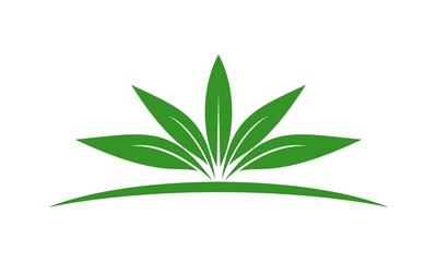 Leaf Logo 38