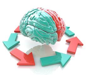Left Brain, Right Brain. Concept. Human brain hemispheres