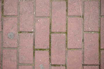 pink pavement floor
