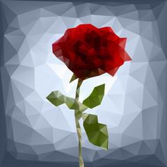 polygonal rose