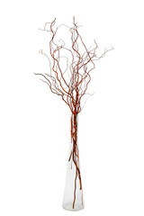 glass vase with willow branches