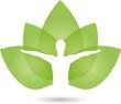 Mensch, Blätter, Gesundheit, Heilpraktiker - 79104205