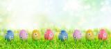 Fototapety colourful easter eggs