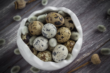 Small quail eggs wooden table dish  scattered database