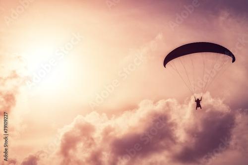 paraglider - 79109227