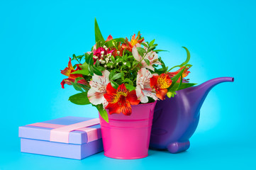 alstroemeria in bucket and watering can