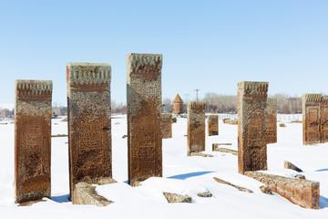 Seljuk Cemetery