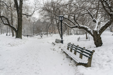 Snow storm in Central park