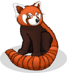 High Quality Red Panda Cartoon Vector Illustration
