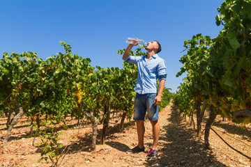 Heat exhausted young farmer cooling himself in vineyard.