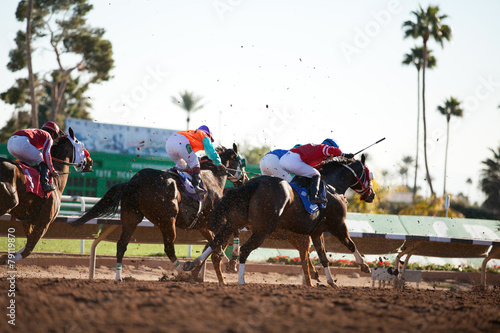 Plexiglas Paardensport Horse Racing