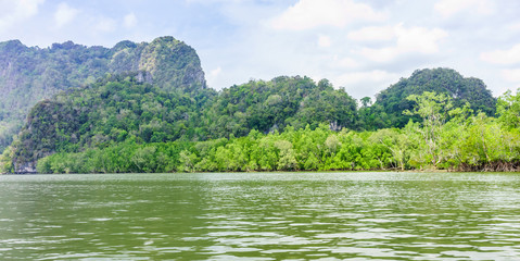 The seaside and mangroves forest in Phang Nga bay, Thailand