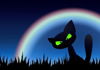 Halloween Cat / Rainbow