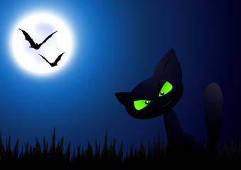 Halloween Cat / Mond / Mondschein / Moonlight